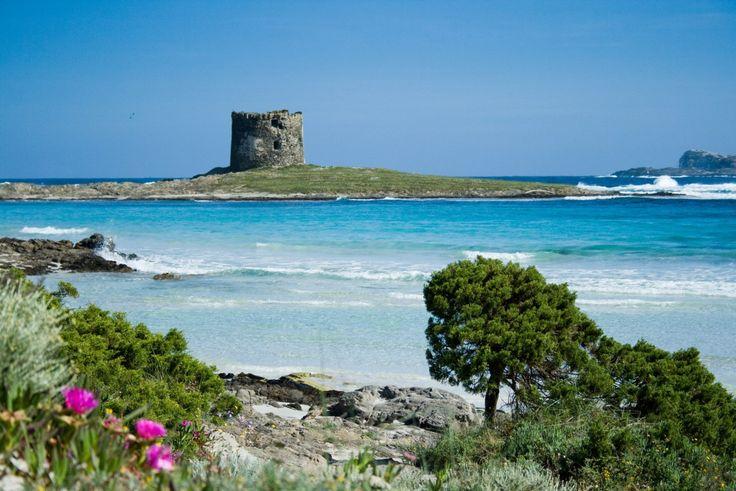 Golfo dell'Asinara, paesaggi da sogno...