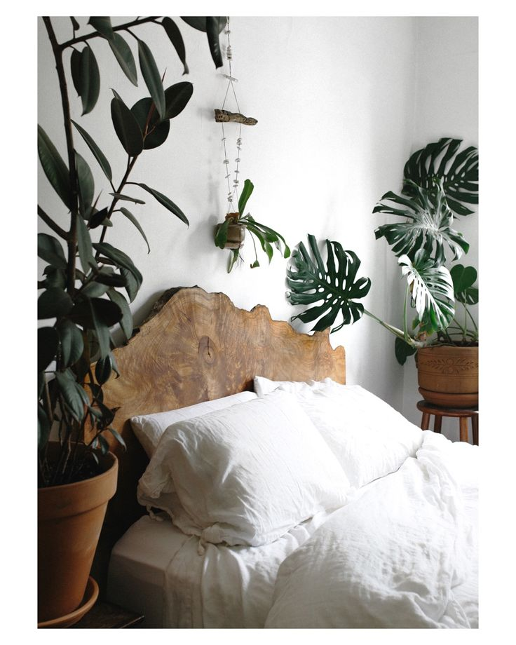 Urban Outfitters Bedroom Ideas Master Bedroom Accent Wall Ideas Master Bedroom Armoire Teenage Bedroom Colour: Best 25+ Jungle Bedroom Ideas Only On Pinterest