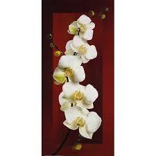 schilderijtjes met rode achtergrond en orchidee - Google zoeken