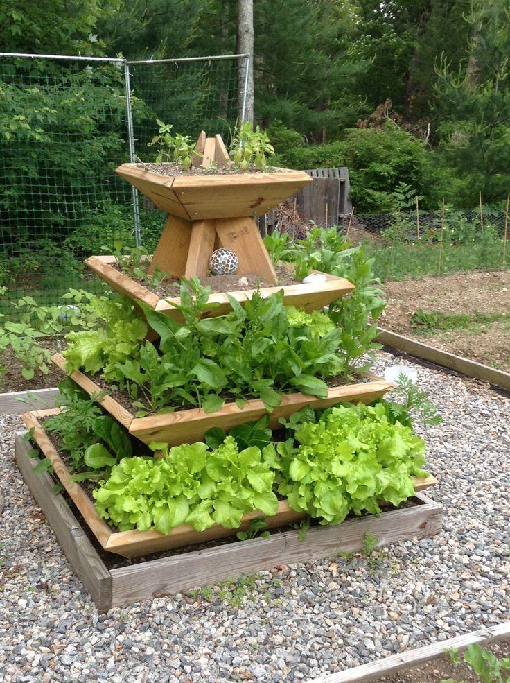 The Pyramid Planter With Lettuce Spinach And Basil Lizbon Vegetable Garden Design Pyramid Planter Backyard Vegetable Gardens