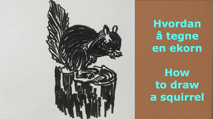 Hvordan å tegne en ekorn.How to draw a squirrel. skisser ideas, drawing ideas, draw, videos, draw art, draw and sketches, tegning, sketghes, videos, youtube, draw animals www.maleriarenaer.com