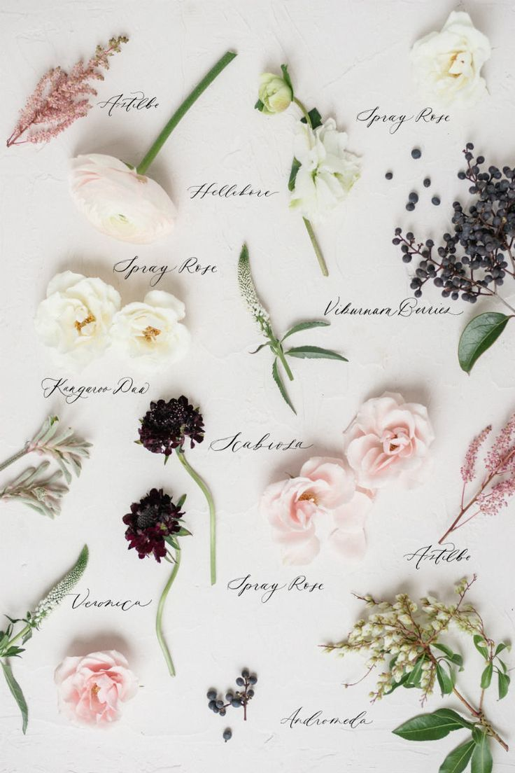 Types Of Wedding Flowers By Colour In 2020 Wedding Flower Guide Flower Bouquet Wedding Cheap Wedding Flowers