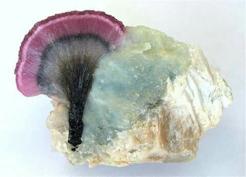 "Elbaite  Locality: Palelni mine (""Kat Chay mine""), Khetchel village (Cache village; Khat Che village), Molo quarter, Momeik Township, Kyaukme District, Shan State, Myanmar  Dimensions: 70 mm  Photo © Dr. Marcus Lueg"