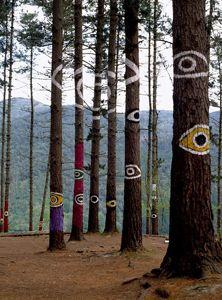 Ojos del totem  Bosque de Oma de Agustín Ibarrola. (El bosque pintado)