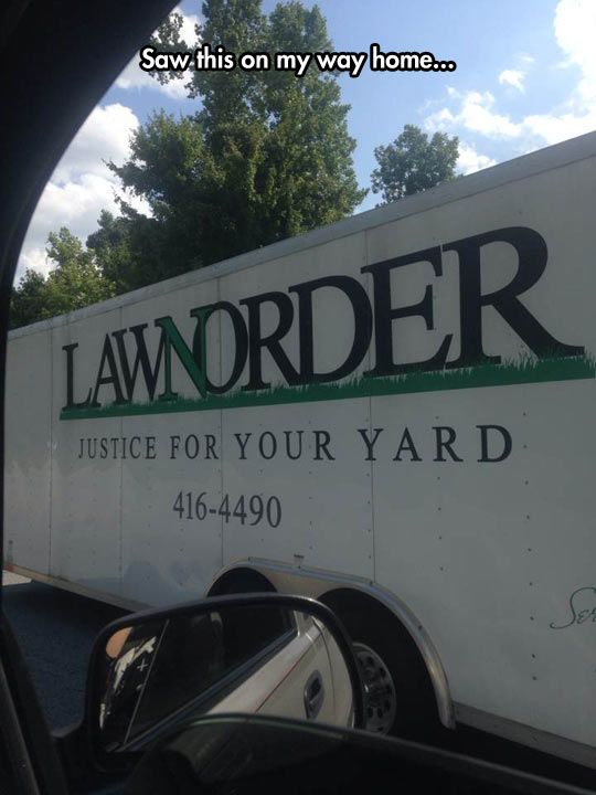 These Are Their Yard's Stories