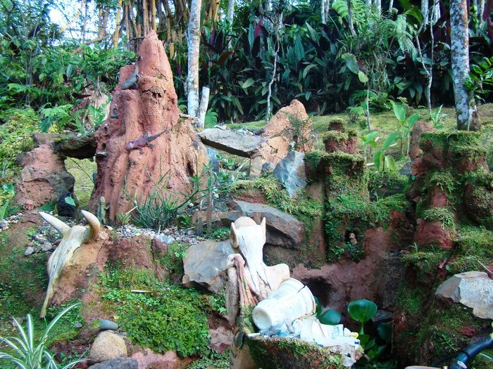 Bichacue Yath - Arte y Naturaleza.