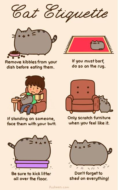 Pusheen the cat :D