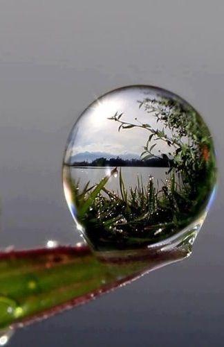 Formación de una gota esferoidal en la superficie del agua líquida, la forma esférica minimiza la superficie, que es el resultado natural de la tensión superficial de los líquidos.