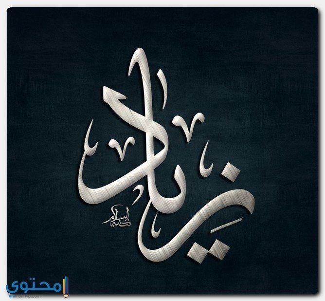 معنى اسم زياد وصفات شخصيتة Zeyad معاني الاسماء Zeyad Ziad Islamic Art Calligraphy Arabic Calligraphy Art Calligraphy Art