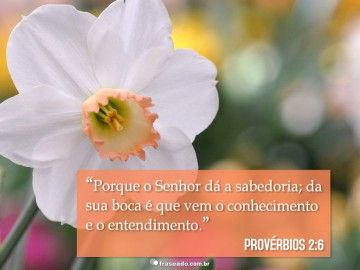 Porque o Senhor dá a sabedoria; da sua boca é que vem o conhecimento e o entendimento. Provérbios 2:6