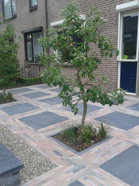 Appelboompje voortuin tuin pinterest tuinen tuin en for Jungle garden design ideas