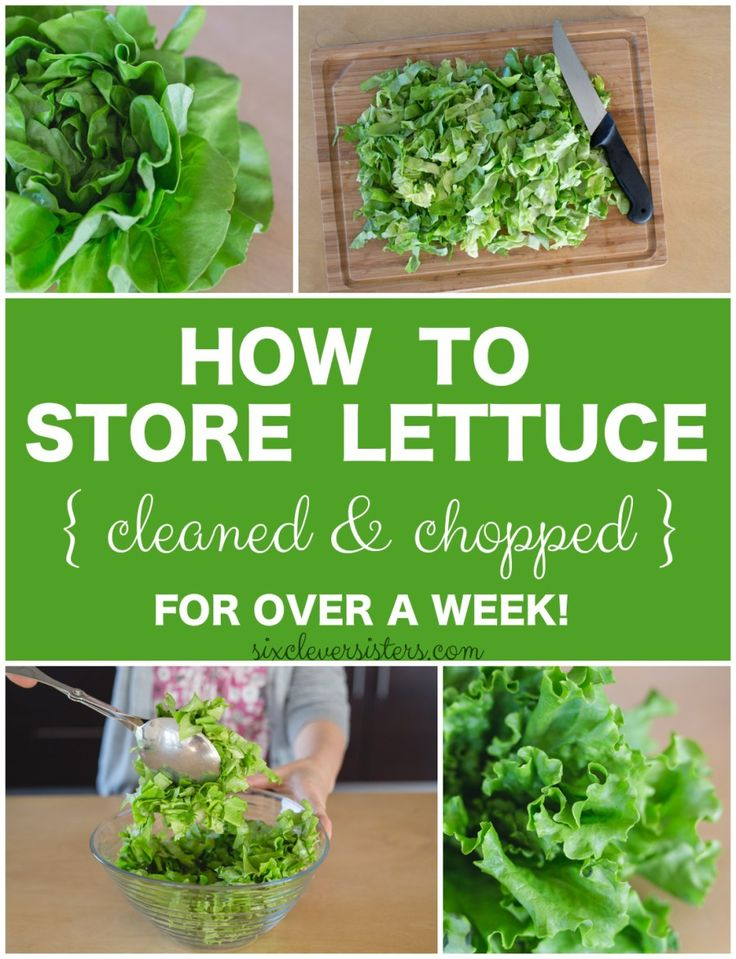Storing lettuce | Storing Chopped Lettuce | Healthy Eating | In the fridge | This is how to store lettuce in your fridge for at least a week! Keep it cleaned and chopped so you can make a #healthy lunch or dinner in no time at all!