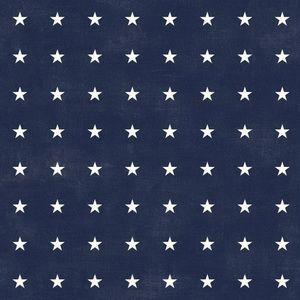 City Limits - Starry Eyes Navy