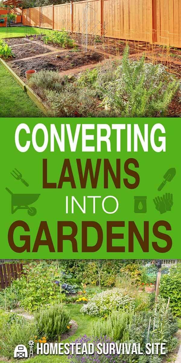 If you want to convert your lawn into a garden, first you need to make a plan. You'll have to figure out what to plant and where, taking things into ...