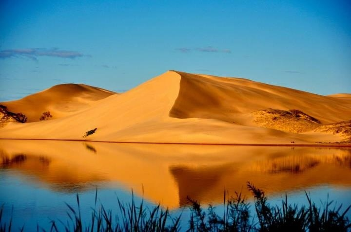 Silver Lake, Michigan~This place is amazing.  The dunes are something you just have to see in person.  We jeeped them. It was a blast.