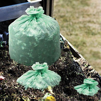 StorAFile E3039E11 EcoSafe6400 Compostable Compost Bags 11mil 30 x 39 Green 48Box >>> More info could be found at the image url.