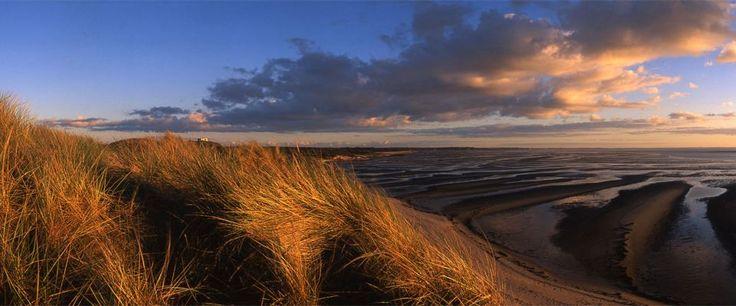Sylt - Das Wattenmeer: Einmaliger Lebensraum in der Nordsee