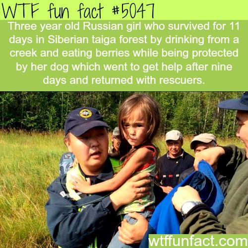 Russian Fact 24