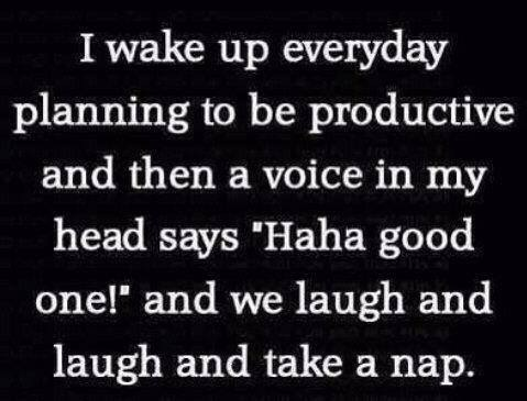 Procrastination Humor
