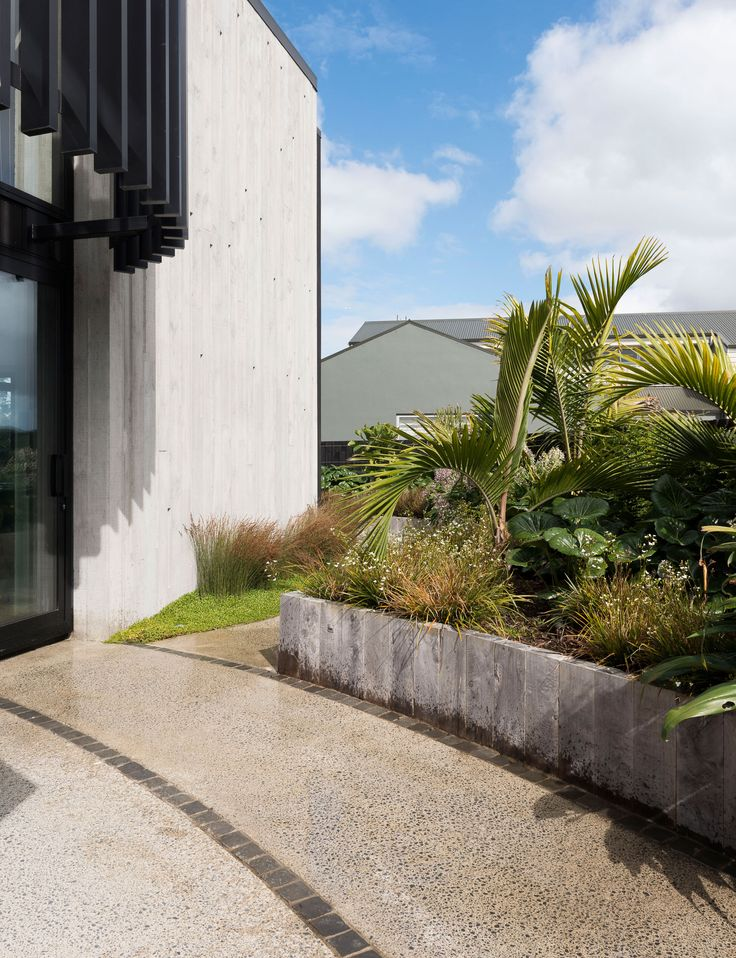 A new-build uses native planting to blend into its mangrove surroundings