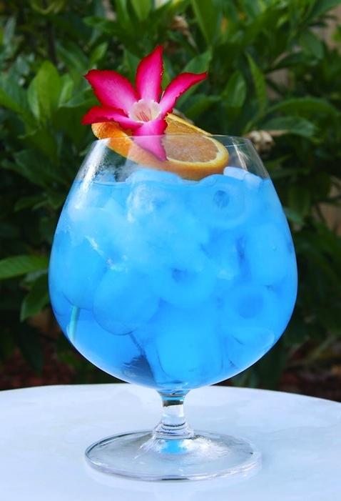 Felicity Huffman's What the Flicka? - Hump Day Cocktail: Disco Lemonade: Florida Keys Wedding, Blue Ocean, Blue Curacao, Grapefruit Juice, Blueocean, Hello Summer, Simple Syrup, Summer Time, Tropical Flowers