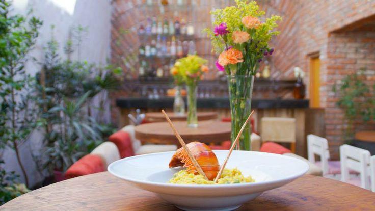 RISOTTO DE LANGOSTA   George Mexico   Cocina Mediterranea  www.dchic.tv  #dchic #restaurantegeorge #restaurante #masaryk #dchictv #gourmet #polanco #comidamediterranea