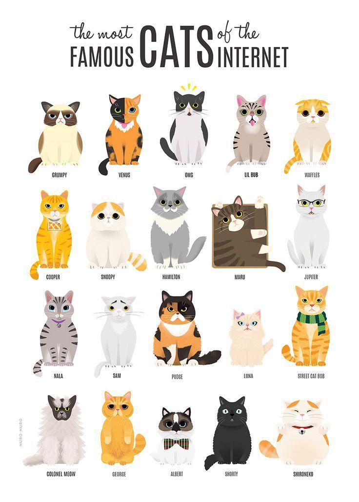 Illustration von NuroNuro (Nurit Benchetrit), Grafikdesigner und Illustrator …