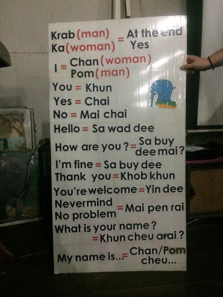Learning some basic Thai phrases.