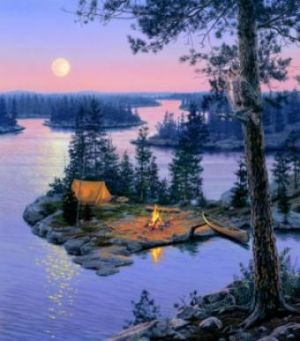 17 Best Images About Canoeing On Pinterest Lakes
