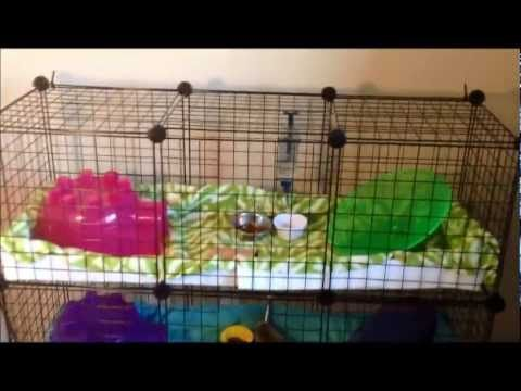 25 best ideas about c c cage on pinterest for How to make a cheap guinea pig cage