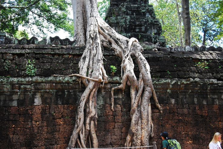 Tempio di Ta Prhom
