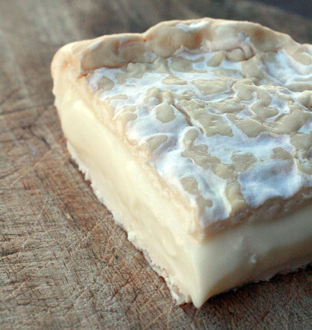 Fattoria Ma'falda – Caprino a crosta fiorita | http://www.ilpastonudo.it/cacio-brado/fattoria-mafalda-caprino-a-crosta-fiorita/