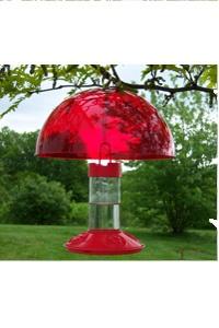 Homemade Hummingbird Nectar: Homemade Hummingbirds Nectar, Attraction Hummingbirds, Windows Feeders, Unique Hummingbirds, Gardens, Hummingbirds Feeders, Hummingbirds Diners, Feeders Helpers, Glasses Hummingbirds