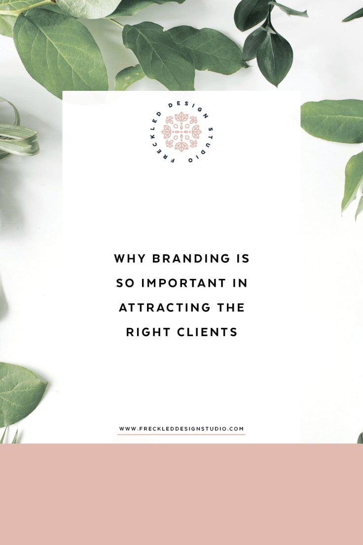 What to know why branding is important in attracting the right kind of clients for your business? Click through to get 5 reasons!