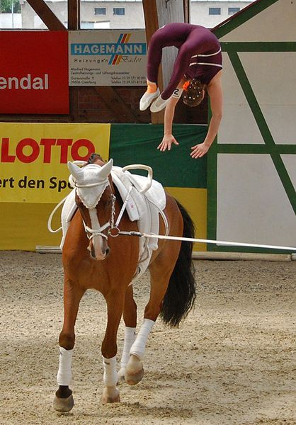 Article has several more amazing vaulting photos! 418px-Individual_vaulting