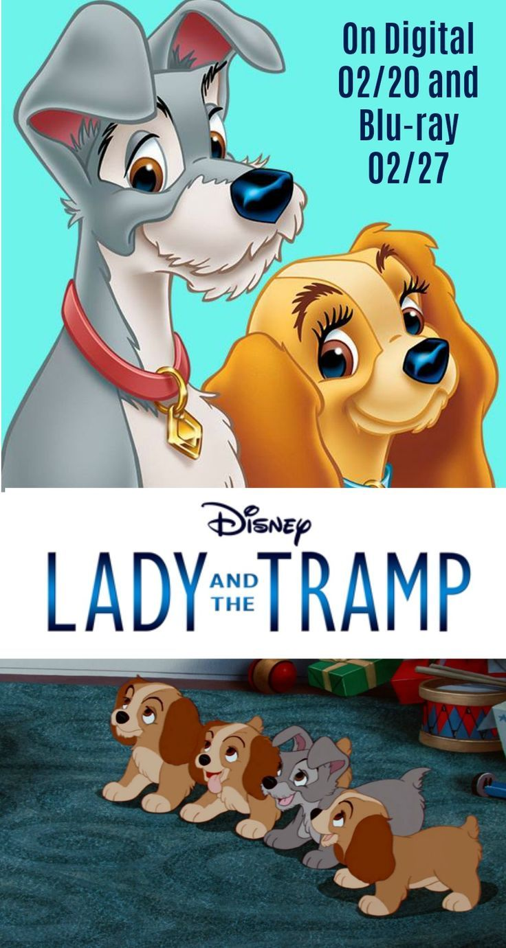 Lady and the Tramp- Fall in Love Again!