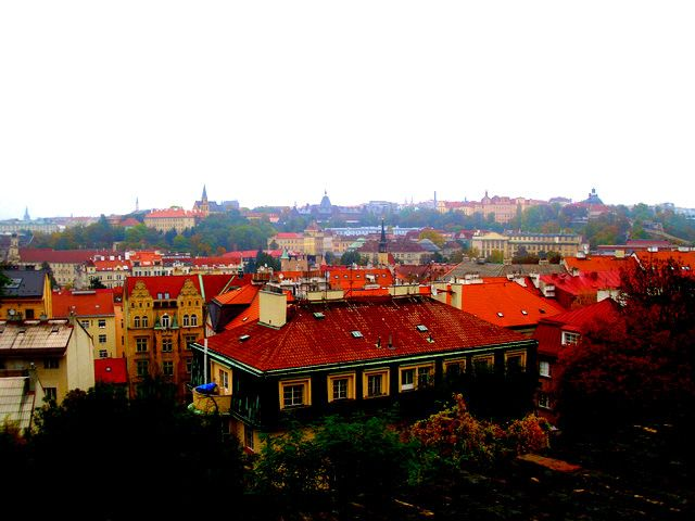 I love the red roofs!