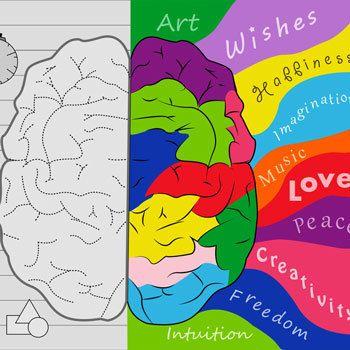 О чем расскажет мозг: конспект лекции Дика Свааба