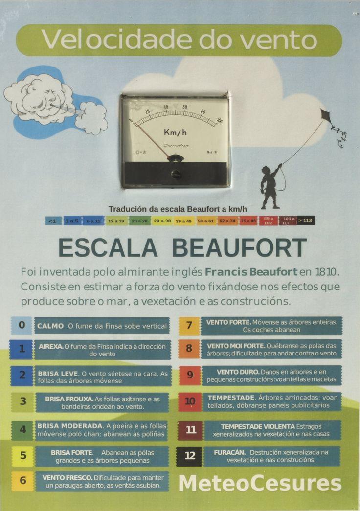 O cadro do anemómetro de MeteoCesures dispón dunha escala Beaufort en galego, adpatada a nosa contorna.