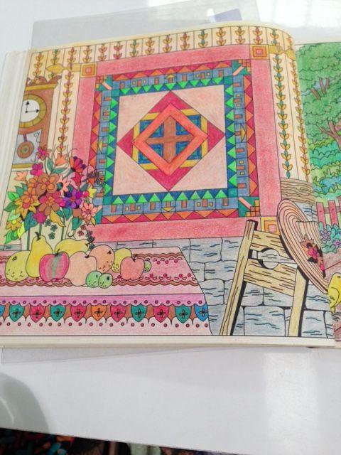 Desenho do livro Pinte o Quilt no Campo.