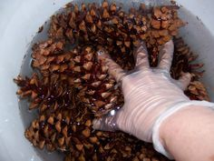 DIY Pine cone Wreath! No glueing or wiring! Click to read! This woman is awesome!