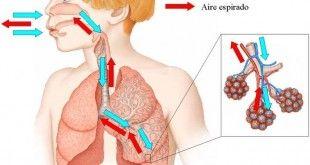 5 señales que te dirán si has estado respirando mal durante toda tu vida.