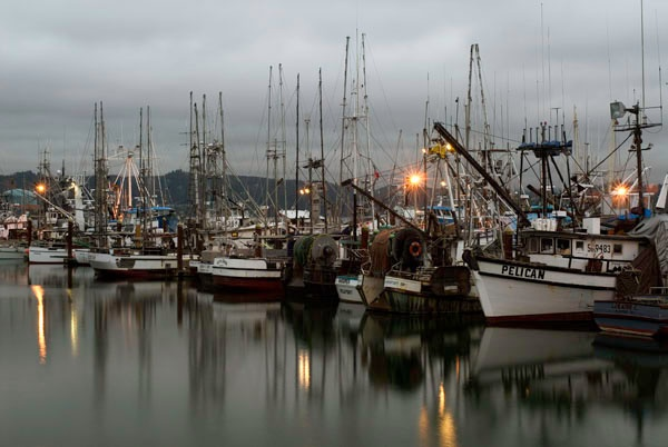 1000 images about newport oregon on pinterest beaches for Charter fishing newport oregon