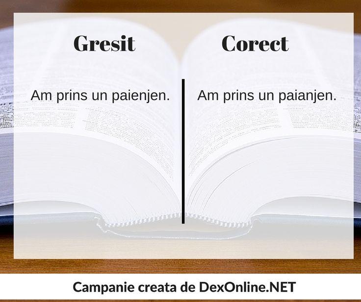 Salvam limba romana impreuna! #salveazalimbaromana #dex #gramatica http://dexonline.net/definitie-paianjen
