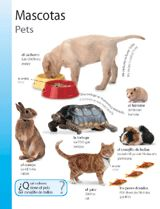 Pets (Mascotas) themed vocabulary | Introduce Spanish words for domestic animals and pets with these vocabulary handouts. Get the printables from TeacherVision: https://www.teachervision.com/spanish-language/printable/70427.html