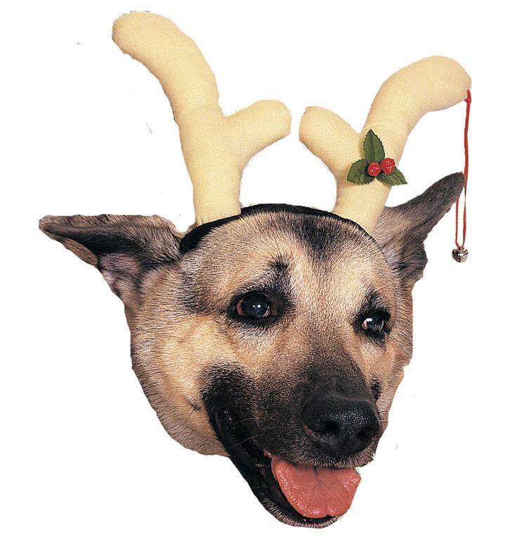 Reindeer Dog Antlers