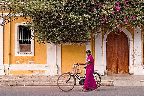 A woman passing by a Pondicherry's house, same colors as the bougainvillea, India
