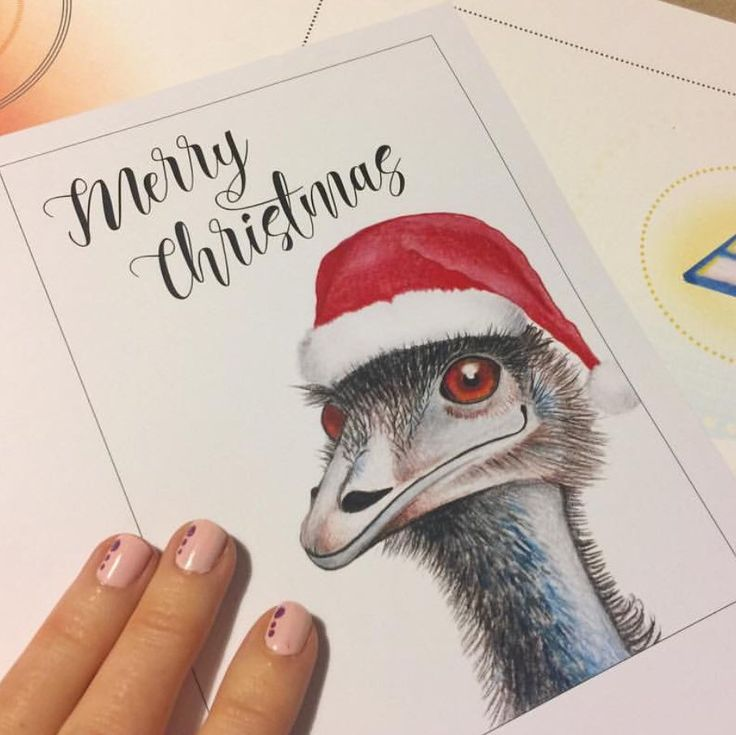 An Aussie Christmas with my merry mate the Emu!