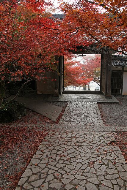 Entrance of the temple in Tamba, Japan. i've always wanted to see a view like this.