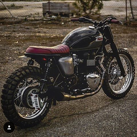 triumph - Bravo@kinetic_motorcycles